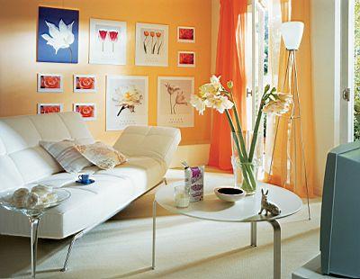 中的主题墙,以书架和博物架混合 卫生间潮气大,装修中选用瓷板画