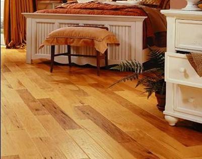 居家常识 四类木地板的清洁与保养