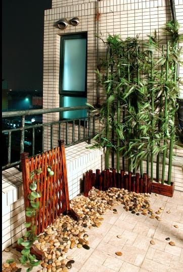 适合阳台旺财的植物种植